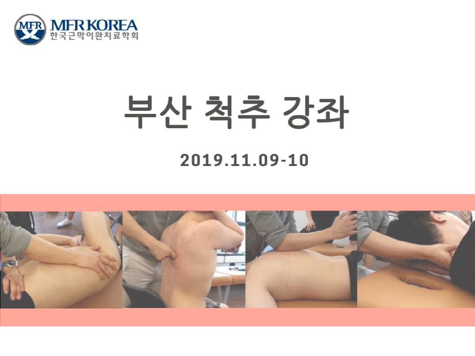 크기변환_부산11월 척추.png